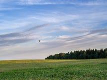 Paesaggio con un baloon di volo Fotografia Stock