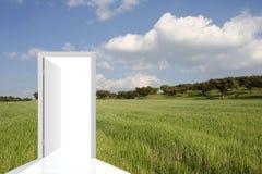Paesaggio con un campo verde Fotografie Stock Libere da Diritti