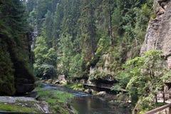 Paesaggio con un fiume in Boemia Fotografia Stock Libera da Diritti