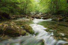 Paesaggio con un fiume della montagna in Crimea fotografia stock libera da diritti