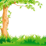 Paesaggio con un grande albero Fotografia Stock