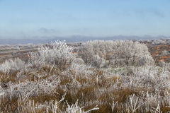 Paesaggio congelato Fotografia Stock Libera da Diritti