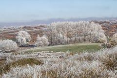 Paesaggio congelato Immagini Stock