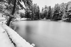 Paesaggio congelato in bianco e nero del lago Immagini Stock