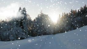 Paesaggio congelato con un cielo notturno e un tramonto I fiocchi di neve stanno cadendo su un paesaggio dell'inverno video d archivio