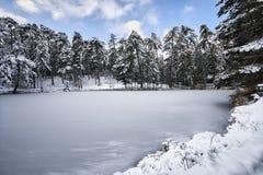 Paesaggio congelato del lago Fotografie Stock