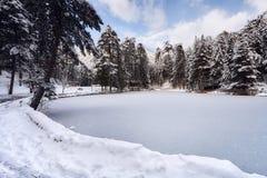 Paesaggio congelato del lago Immagini Stock Libere da Diritti