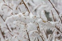 Paesaggio congelato di inverno in Sichuan, Cina fotografia stock