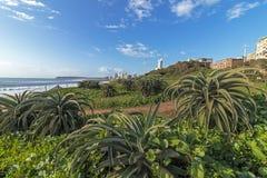 Paesaggio costiero della città a Durban Sudafrica Immagine Stock