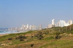Paesaggio costiero della vegetazione della duna a Durban Sudafrica Immagine Stock Libera da Diritti