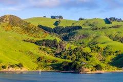 Paesaggio costiero di regione della Nuova Zelanda Otago Fotografia Stock