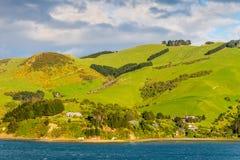 Paesaggio costiero di regione della Nuova Zelanda Otago Fotografia Stock Libera da Diritti
