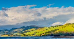 Paesaggio costiero panoramico di regione della Nuova Zelanda Otago Fotografia Stock