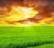 Paesaggio creativo di tramonto Immagine Stock