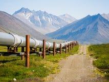 Paesaggio d'Alasca Immagini Stock