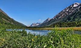 Paesaggio d'Alasca del lago Immagini Stock