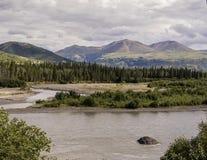Paesaggio d'Alasca di estate vicino al parco nazionale di Denali Immagine Stock Libera da Diritti