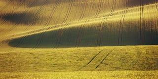 Paesaggio d'annata agricolo Immagini Stock Libere da Diritti