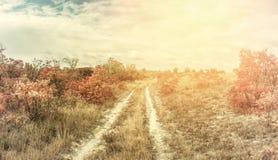 Paesaggio d'annata con la strada rurale fotografia stock