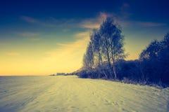 Paesaggio d'annata del campo di inverno Immagine Stock