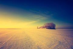 Paesaggio d'annata del campo di inverno Immagini Stock