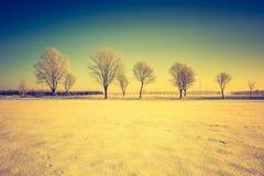 Paesaggio d'annata del campo di inverno Fotografia Stock Libera da Diritti
