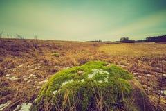 Paesaggio d'annata del campo di inverno Fotografia Stock