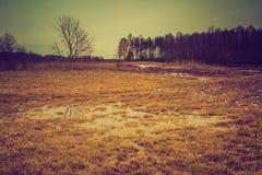 Paesaggio d'annata del campo di inverno Fotografie Stock Libere da Diritti