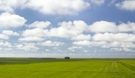 Paesaggio dai Paesi Bassi Fotografie Stock