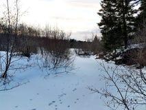 Paesaggio dal Canada fotografie stock libere da diritti