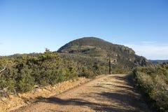 Paesaggio dal parco nazionale blu delle montagne Immagine Stock