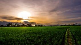 Paesaggio dall'azienda agricola di Cililin, Java ad ovest, Indonesia Fotografie Stock Libere da Diritti