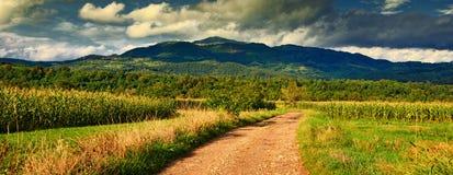 Paesaggio dalle montagne di Apuseni Fotografia Stock