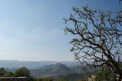 Paesaggio a darjeeling Fotografia Stock