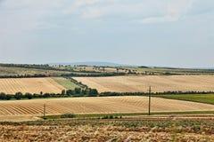 Paesaggio dei campi coltivati Fotografia Stock