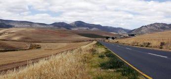Paesaggio dei campi di frumento fotografia stock