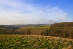 Paesaggio dei wolds di Yorkshire Fotografie Stock Libere da Diritti