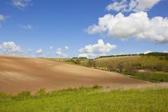Paesaggio dei wolds di Yorkshire Immagine Stock Libera da Diritti