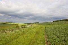 Paesaggio dei wolds di Yorkshire Immagini Stock Libere da Diritti