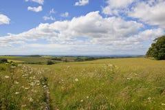 Paesaggio dei wolds di Yorkshire Fotografie Stock