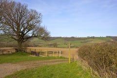 Paesaggio dei wolds di Yorkshire nella primavera Fotografia Stock