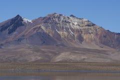 Paesaggio del Altiplano nel parco nazionale di Lauca nel Cile immagini stock
