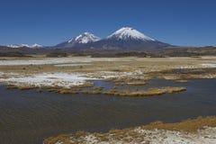 Paesaggio del Altiplano nel parco nazionale di Lauca nel Cile fotografia stock libera da diritti