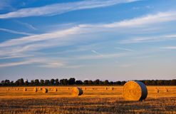 Paesaggio del campo con le balle della paglia Fotografie Stock Libere da Diritti