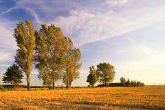 Paesaggio del campo con le balle della paglia Immagini Stock Libere da Diritti