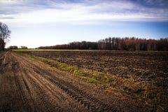 Paesaggio del campo di agricoltura a primavera Fotografia Stock Libera da Diritti