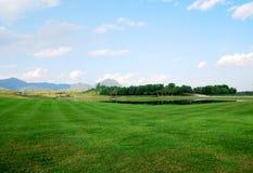 Paesaggio del campo di erba verde Immagini Stock Libere da Diritti