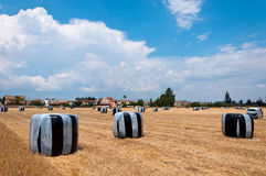 Paesaggio del campo di estate con il mucchio di fieno agricoltura Fotografie Stock