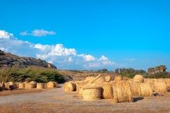 Paesaggio del campo di estate con il mucchio di fieno agricoltura Fotografia Stock