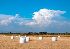 Paesaggio del campo di estate con il mucchio di fieno Comcept di agricoltura Immagine Stock Libera da Diritti